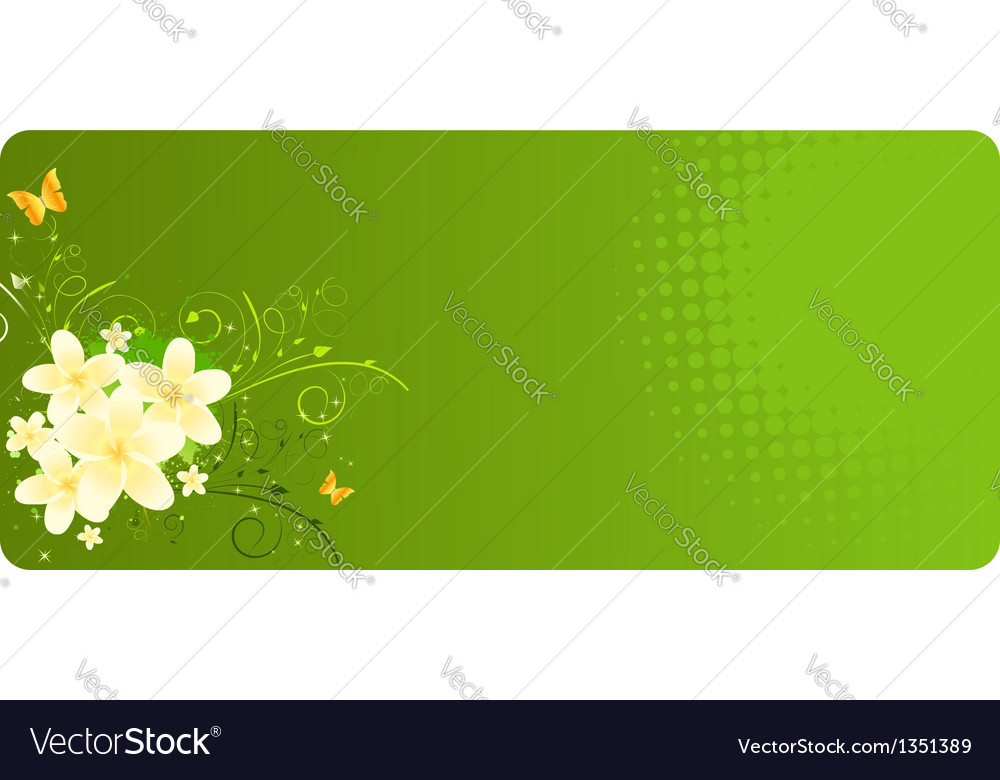 Green banner with plumeria vector | Price: 1 Credit (USD $1)