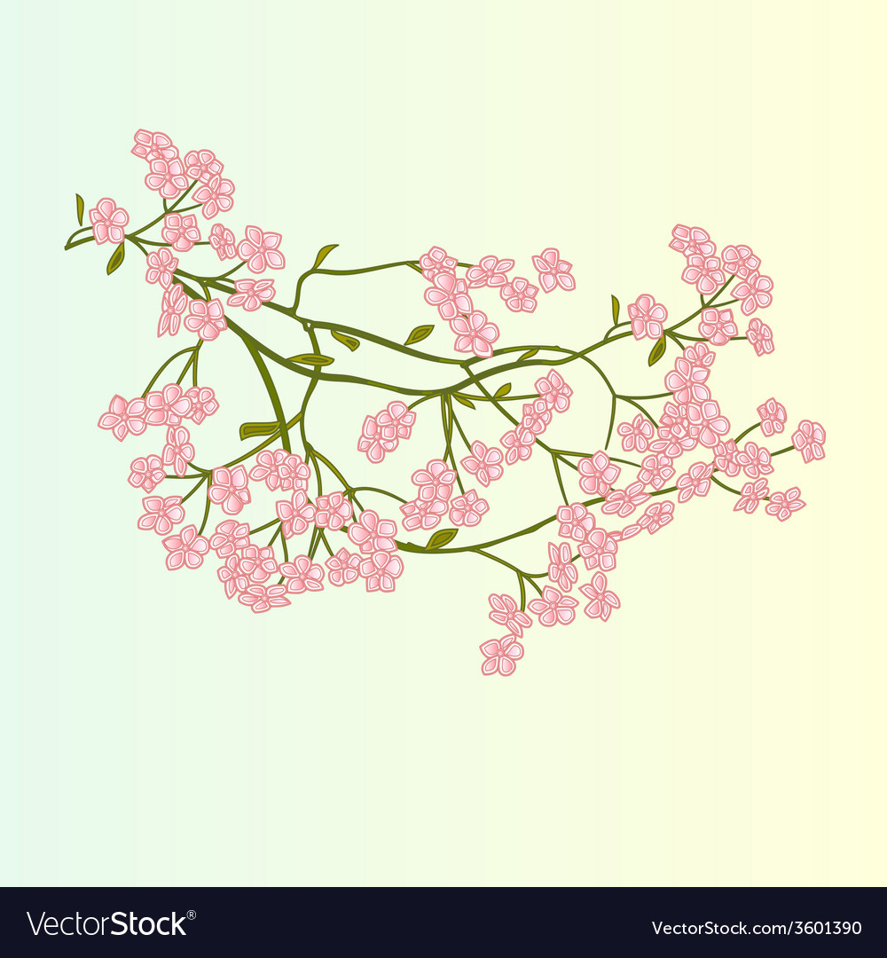 Spring flowers cherry blossoms background vector | Price: 1 Credit (USD $1)