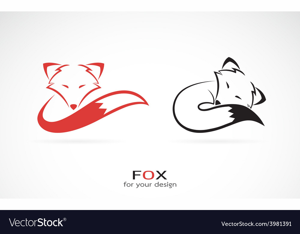 Image of an fox design vector | Price: 1 Credit (USD $1)