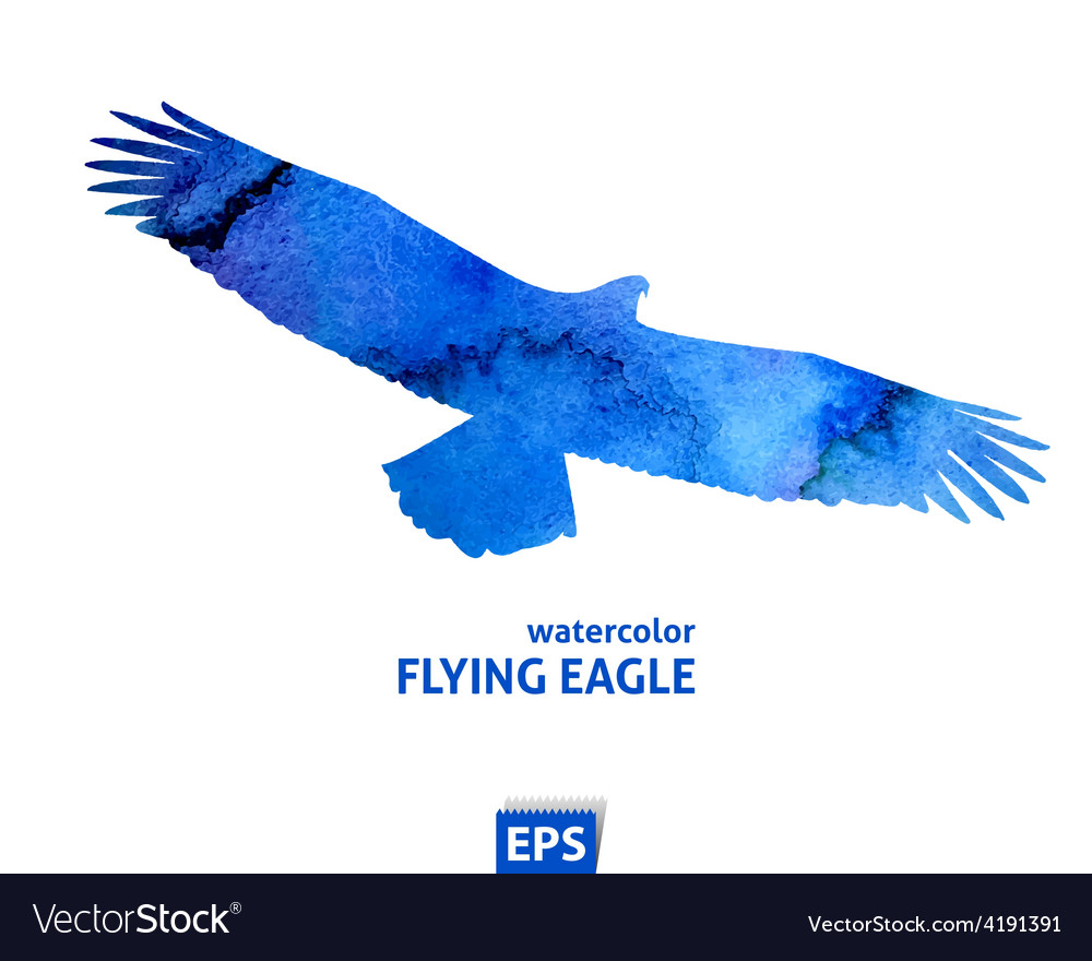 Watercolor flying blue eagle vector | Price: 1 Credit (USD $1)