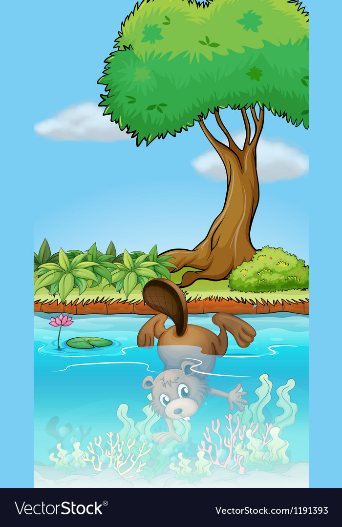 A beaver diving underwater vector | Price: 1 Credit (USD $1)