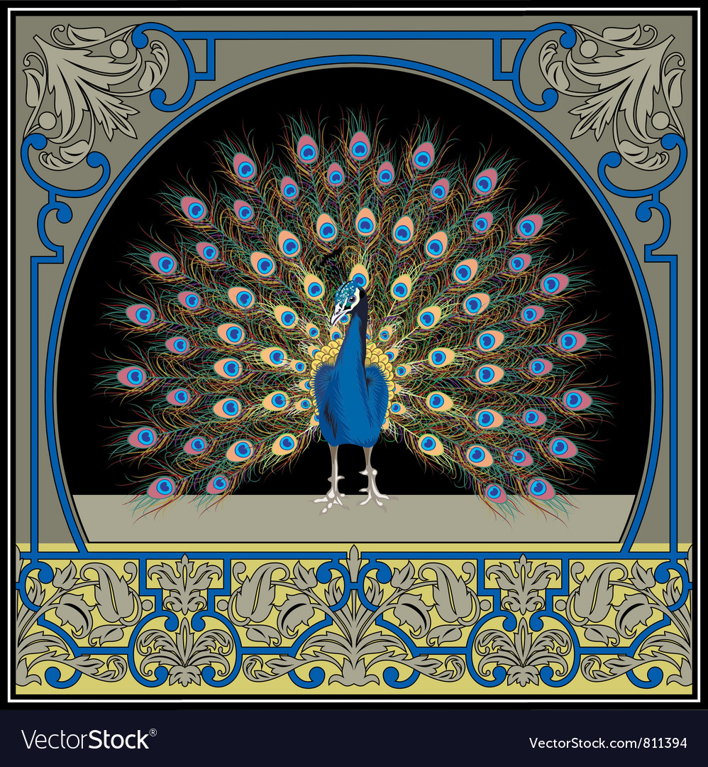 Frame with peacock vector | Price: 3 Credit (USD $3)