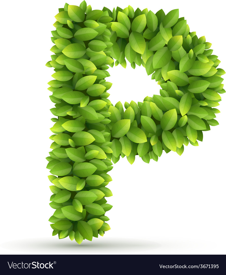 Letter p alphabet of green leaves vector | Price: 1 Credit (USD $1)
