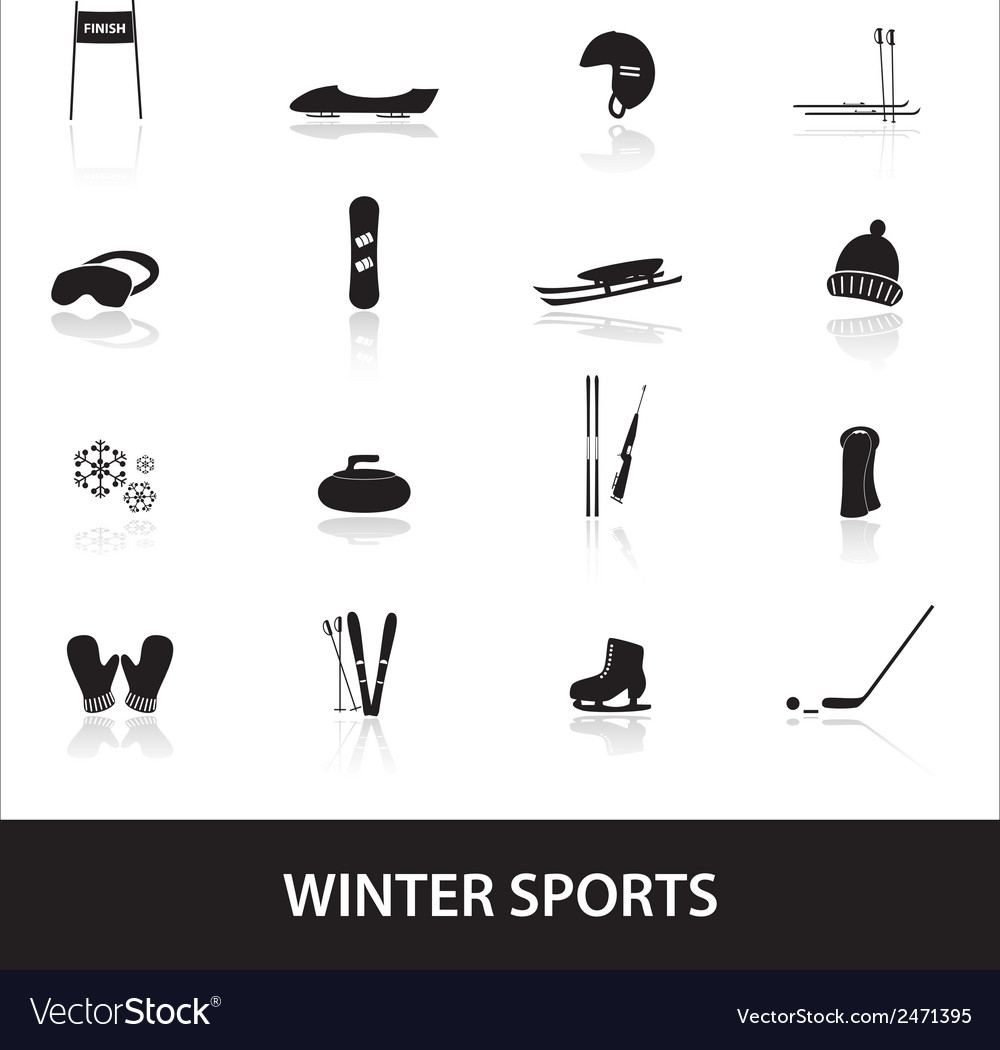 Winter sports eps10 vector | Price: 1 Credit (USD $1)