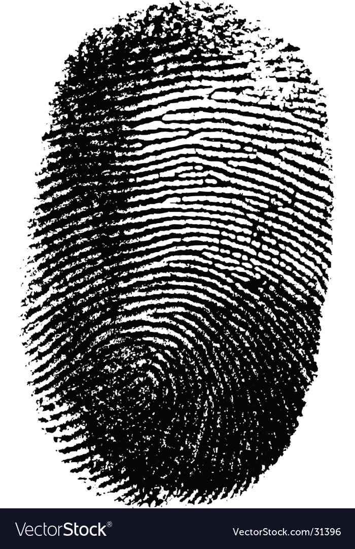 Fingerprint on white background vector | Price: 1 Credit (USD $1)
