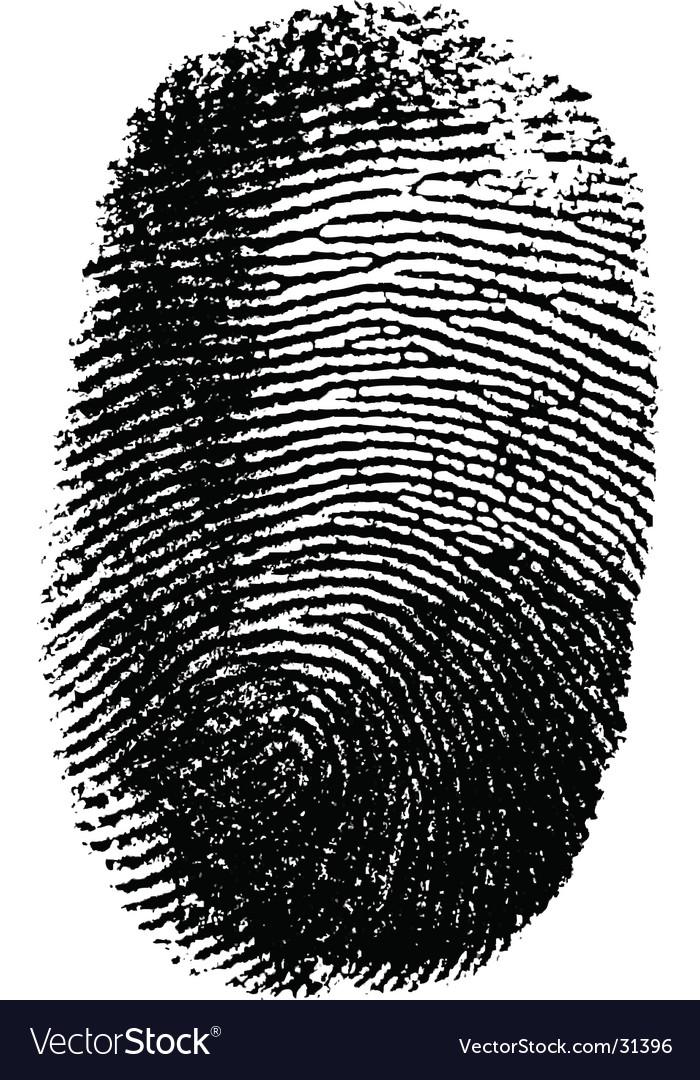 Fingerprint on white background vector | Price: 1 Credit (USD $1)