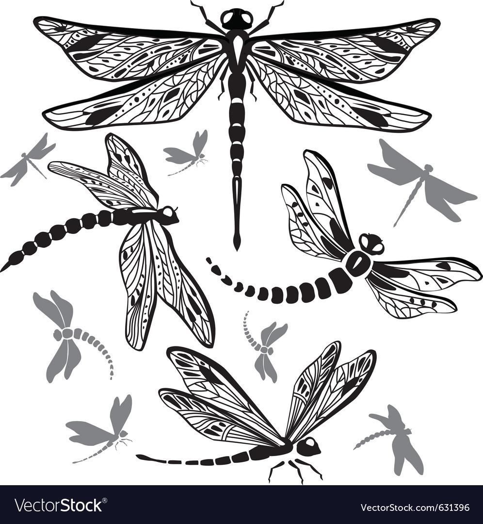 Set of decorative dragonflies vector | Price: 1 Credit (USD $1)