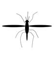 Mosquito icon vector