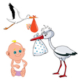 Cartoon stork carries newborn baby vector
