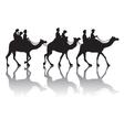 Camels caravan vector