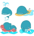 Set of whales vector