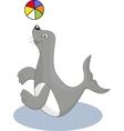 Seal cartoon vector