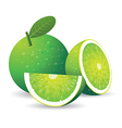 Green lemon vector