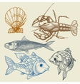 Fish lobster shell set vector