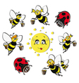 Bees ladybirds around the sun vector
