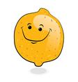 Doodle orange fruit vector