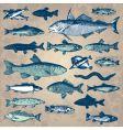 Vintage fish set vector