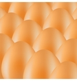 Organic eggs vector