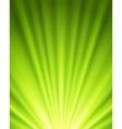 Celebration light background vector