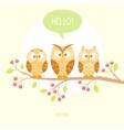 Owls three vector
