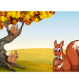 Three squirrels with nuts at the big tree vector