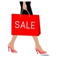 Woman with package sale vector