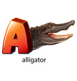 A letter a for alligator vector