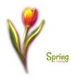Red beautiful blur tulip vector