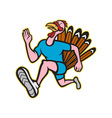 Turkey run runner side cartoon isolated vector