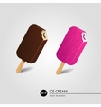 Chocolate and fruit ice cream vector