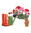 Flowers in the garden rubber boots and watering vector