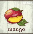 Hand drawing of mango fresh fruit sketch vector