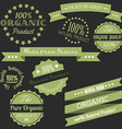 Old retro vintage elements for organic natural vector