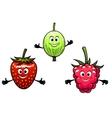 Gooseberry raspberry and strawberry berries vector