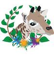 Giraffe zoo symbol vector