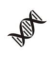 Dna molecule icon vector