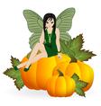 Fairy on a pumpkin vector
