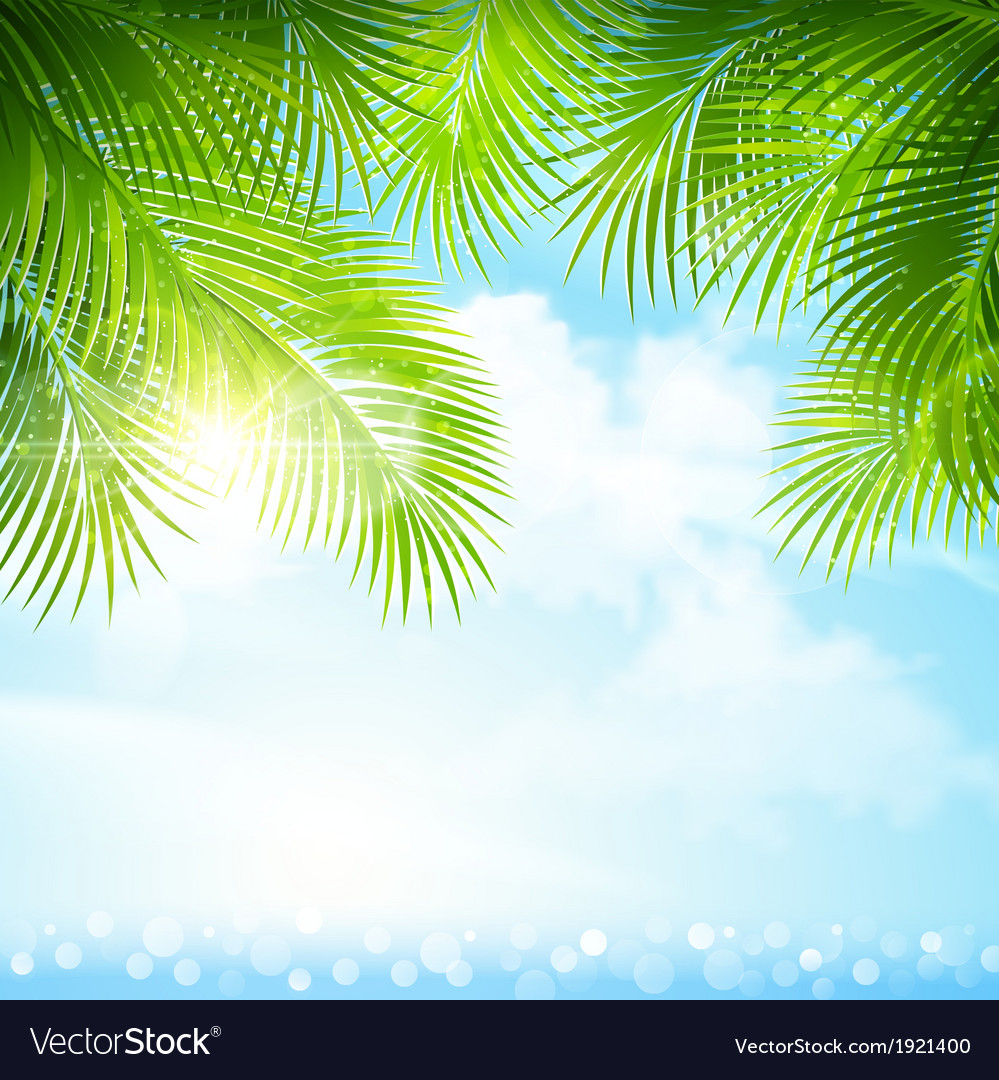 Palm leaves with bright sunlight vector | Price: 1 Credit (USD $1)