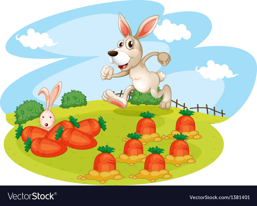 A bunny running along the garden with carrots vector | Price: 1 Credit (USD $1)