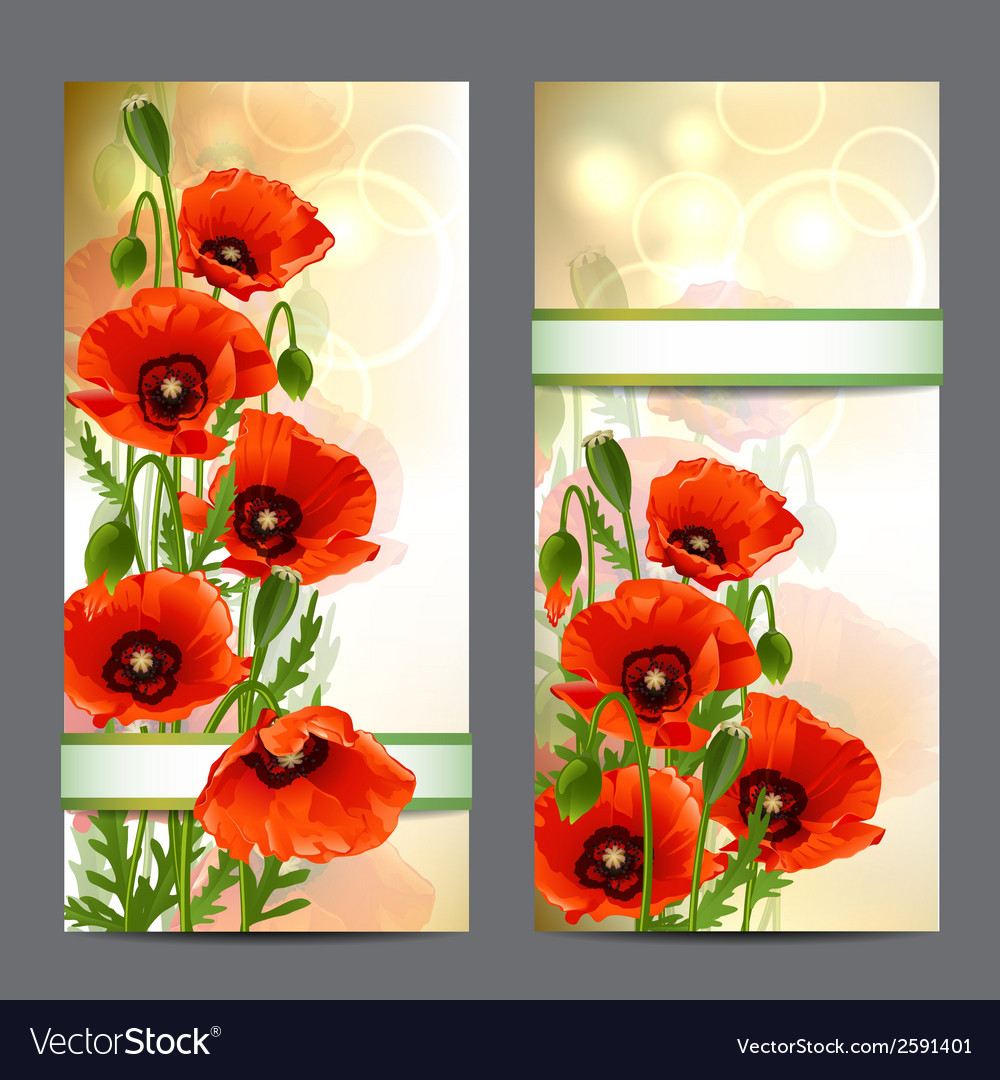 Set of summer banners with red poppies vector | Price: 1 Credit (USD $1)