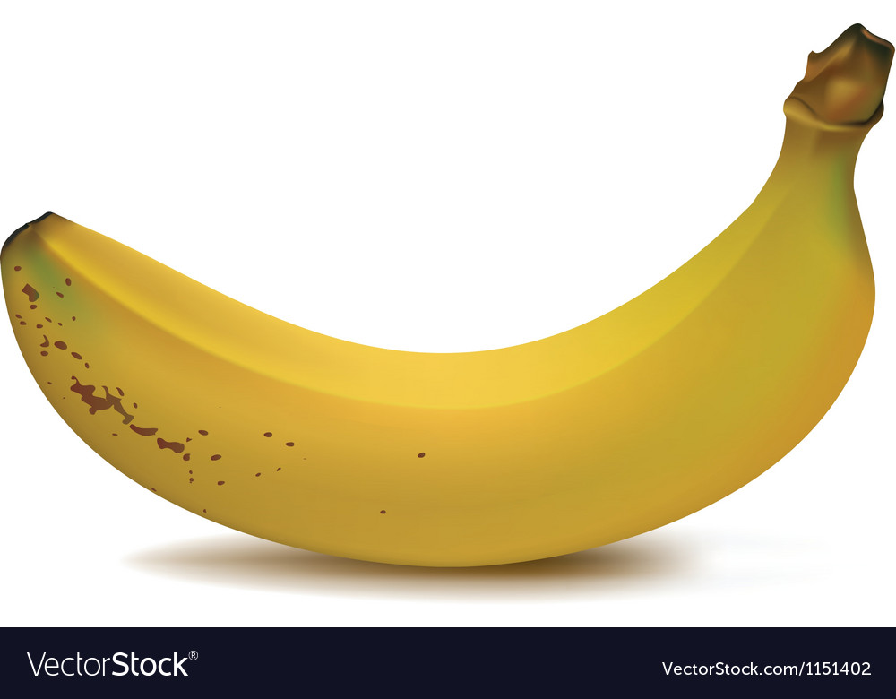 Banana fruit vector | Price: 1 Credit (USD $1)
