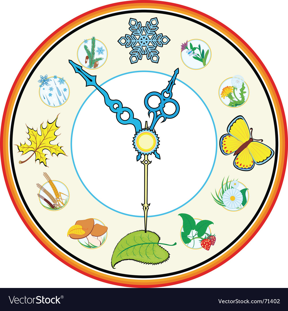 Clock four season vector | Price: 1 Credit (USD $1)