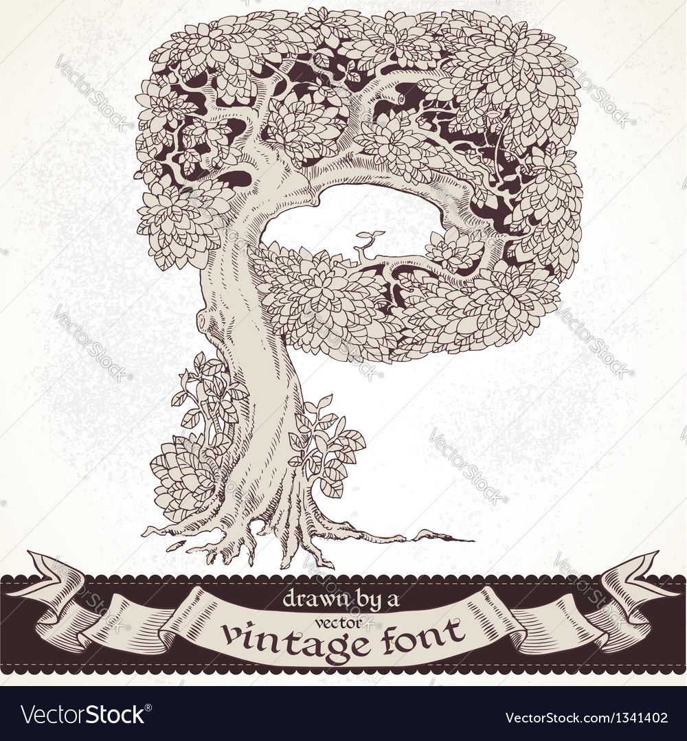 Fable forest hand drawn by a vintage font - p vector | Price: 1 Credit (USD $1)