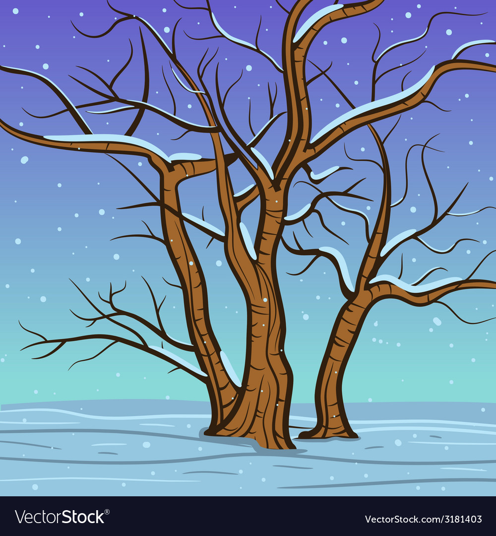 Winter tree vector | Price: 1 Credit (USD $1)