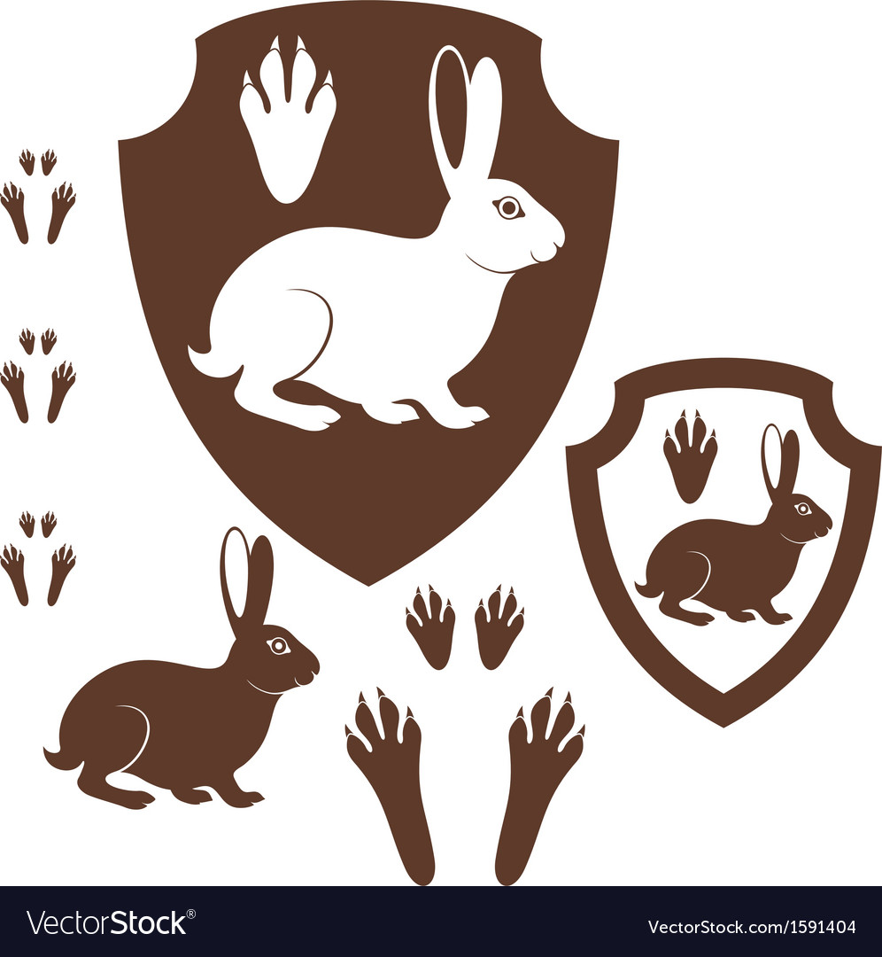 Hare paw print vector | Price: 1 Credit (USD $1)