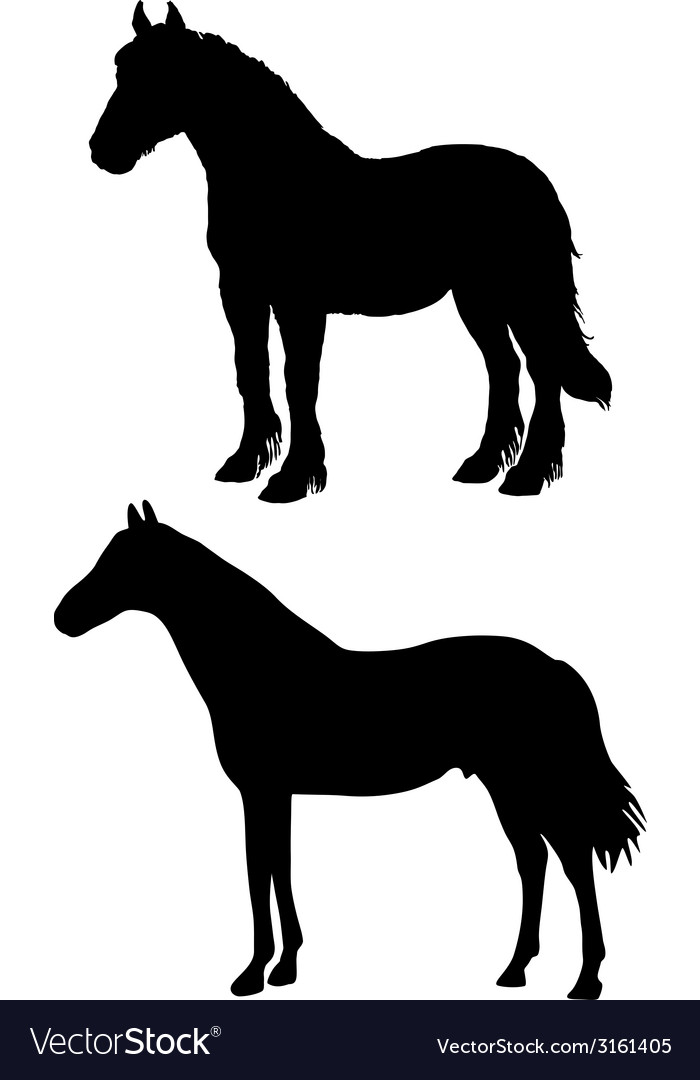 Horses silhouettes vector | Price: 1 Credit (USD $1)