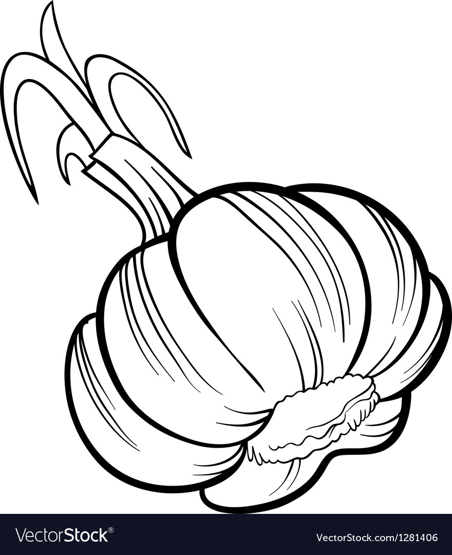 Garlic vegetable cartoon for coloring book vector | Price: 1 Credit (USD $1)