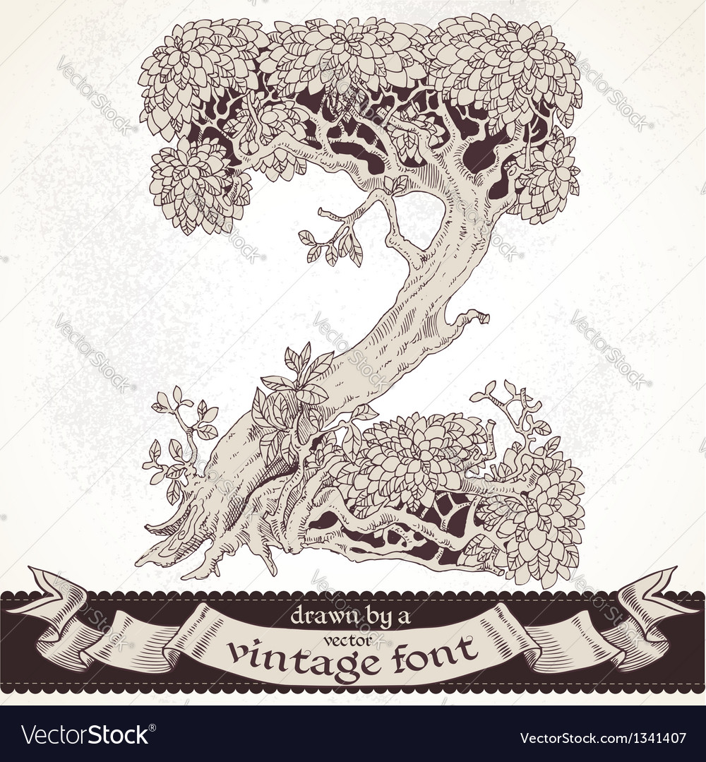 Fable forest hand drawn by a vintage font - z vector | Price: 1 Credit (USD $1)