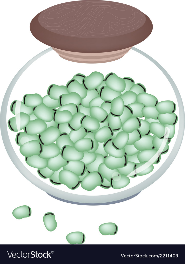 A jar of fresh green broad beans vector | Price: 1 Credit (USD $1)