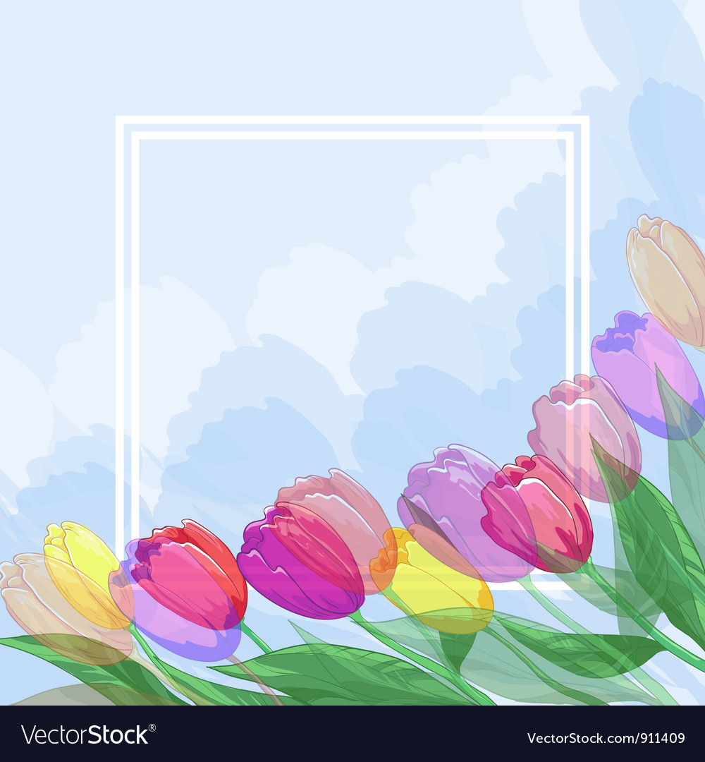 Flowers tulips and frame vector | Price: 1 Credit (USD $1)